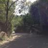 多治見市にある緑豊かな空間・ギャルリ百草(ももぐさ)