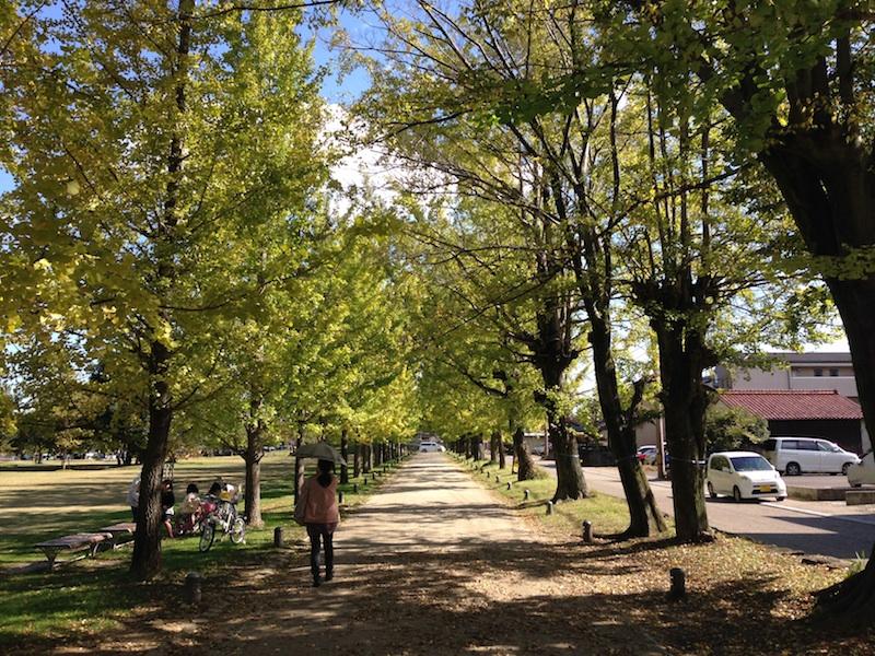 子どもが目一杯走り回れる!各務原市・学びの森と市民公園
