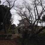 """浜松の数少ない観光地""""浜松城"""""""