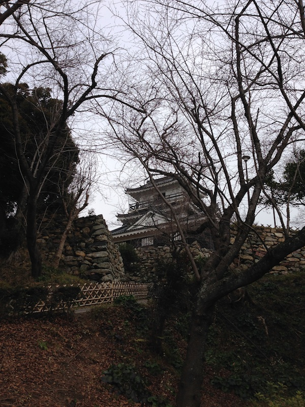 hamamatsuzyou01