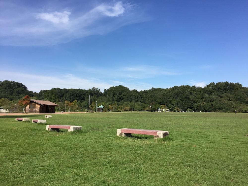 大きな芝生広場最高!ふれあいパーク緑の丘